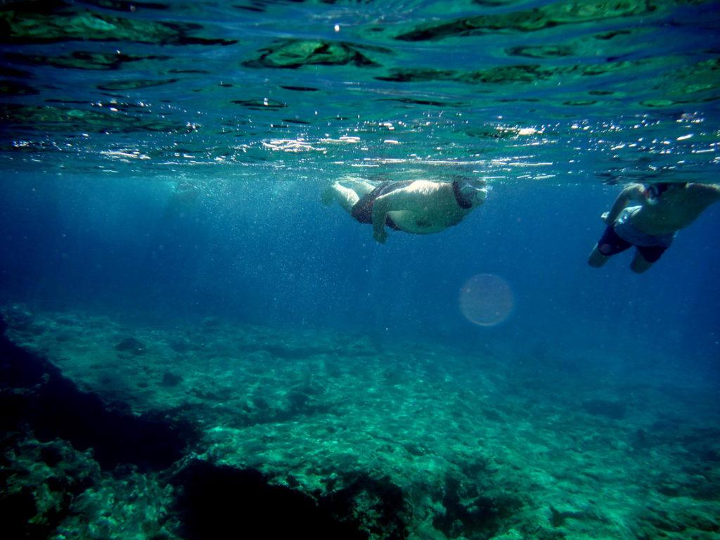 SnorkelShipwreck2407201905