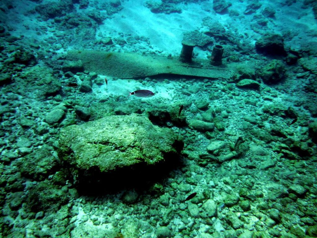 SnorkelShipwreck2009201904