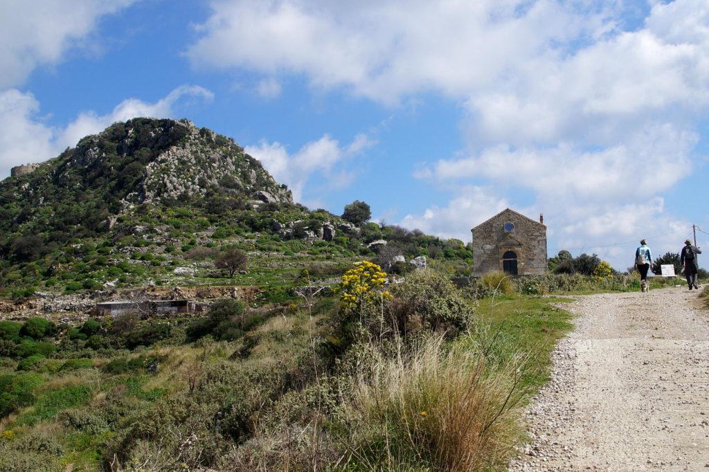 Polyrrinia hilltop